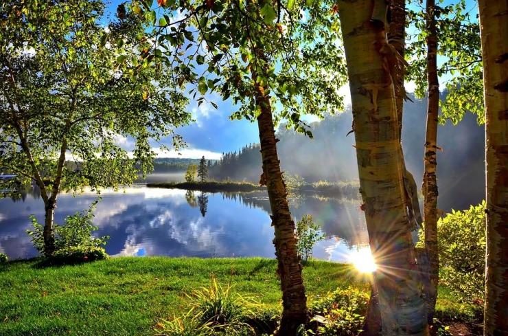 summer-landscape-1500748_960_720